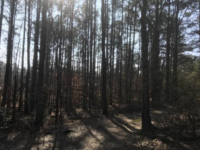 0 Maroney Mill Road, Douglasville, GA 30134 (MLS #6120720) :: Path & Post Real Estate