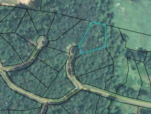 8 Brumby Trail, Ellijay, GA 30536 (MLS #6121456) :: North Atlanta Home Team