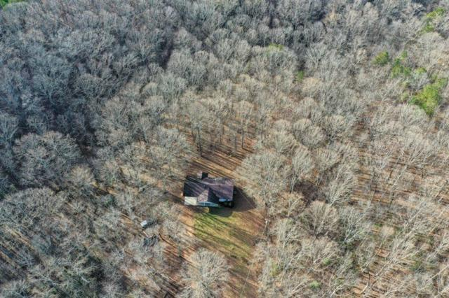 7265 Anderson Lake Road, Dawsonville, GA 30534 (MLS #6123250) :: The Cowan Connection Team