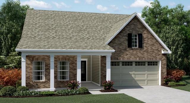 218 William Creek Drive, Holly Springs, GA 30115 (MLS #6123949) :: North Atlanta Home Team