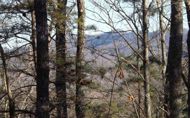 14&13 Ivy Log Estates, Blairsville, GA 30512 (MLS #6126583) :: RE/MAX Paramount Properties