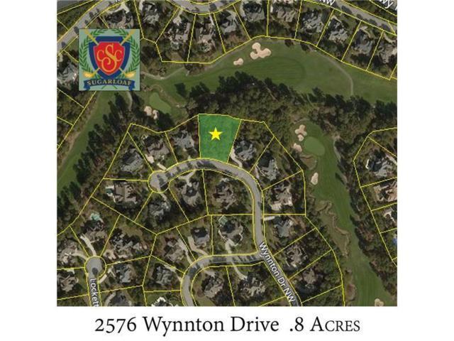 2576 Wynnton Drive, Duluth, GA 30097 (MLS #6127713) :: The Cowan Connection Team