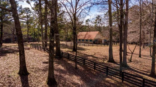 0 Rising Star Road, Brooks, GA 30205 (MLS #6129354) :: Iconic Living Real Estate Professionals
