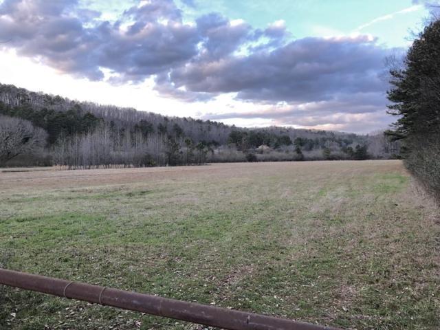 35 Ledford Lane NW, Cartersville, GA 30121 (MLS #6502341) :: Path & Post Real Estate