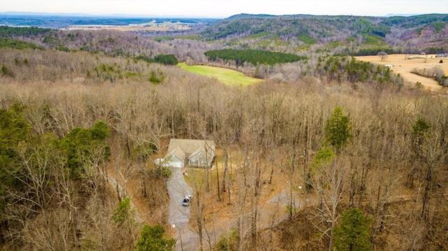 201 Navajo Trail, Rydal, GA 30171 (MLS #6504707) :: Ashton Taylor Realty