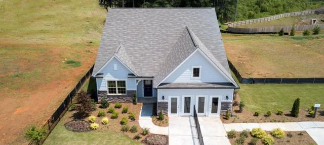 229 William Creek Drive, Holly Springs, GA 30115 (MLS #6515063) :: The Zac Team @ RE/MAX Metro Atlanta