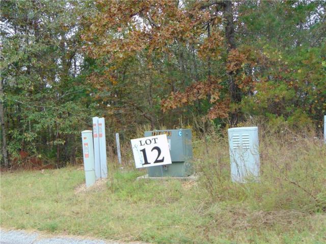 11/12 Oakland Drive SE, Calhoun, GA 30701 (MLS #6520449) :: The Zac Team @ RE/MAX Metro Atlanta