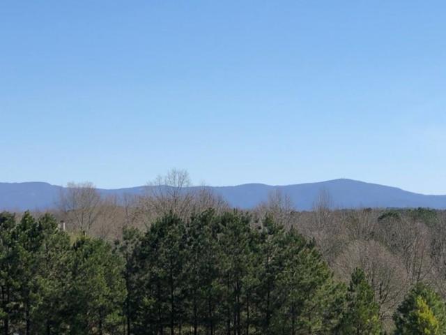 463 Village Creek Drive, Jasper, GA 30143 (MLS #6520764) :: Hollingsworth & Company Real Estate