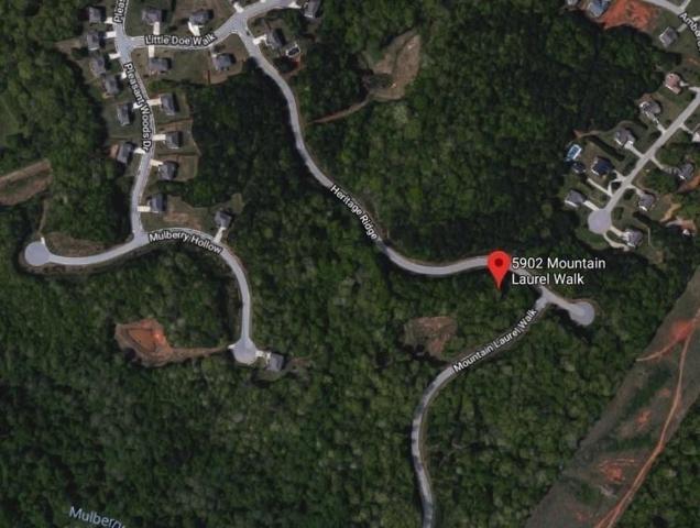 5902 Mountain Laurel Walk, Flowery Branch, GA 30542 (MLS #6522390) :: North Atlanta Home Team
