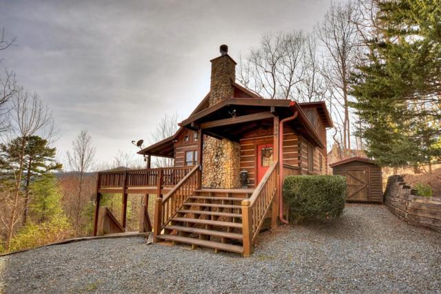 447 High Cashes Valley, Cherry Log, GA 30522 (MLS #6524921) :: The North Georgia Group