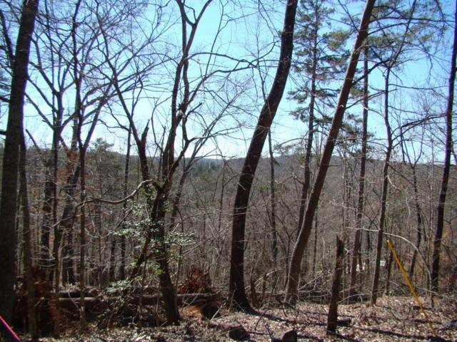 00 Deer Run Road, Dahlonega, GA 30533 (MLS #6525165) :: Iconic Living Real Estate Professionals