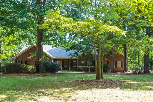 128 Mcbride Cemetary Road, Fayetteville, GA 30215 (MLS #6528019) :: Rock River Realty