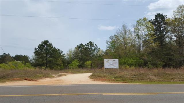 00 Pineville Road, Buena Vista, GA 31803 (MLS #6528481) :: North Atlanta Home Team