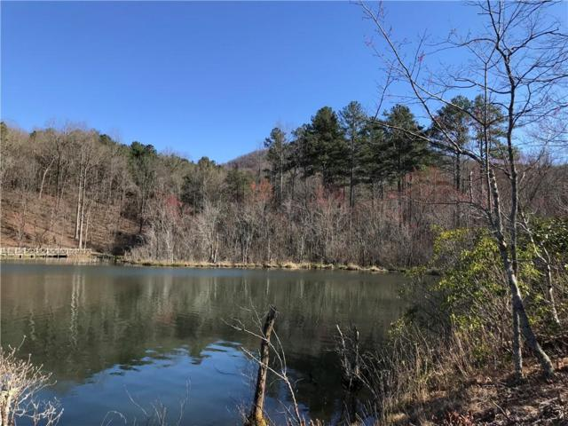 Lt141 Autumn Fern Lane, Ellijay, GA 30536 (MLS #6529496) :: Hollingsworth & Company Real Estate