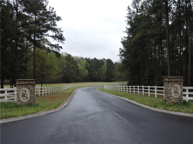 Lot 5S Pointe Shores, Tignall, GA 30668 (MLS #6531709) :: Iconic Living Real Estate Professionals