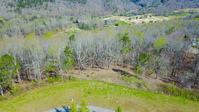 854 Rockhound Drive, Dahlonega, GA 30533 (MLS #6536410) :: Path & Post Real Estate