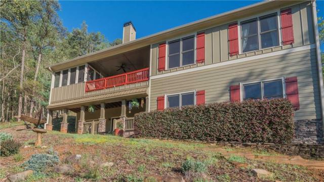 379 Buckeye Trail, Jasper, GA 30143 (MLS #6536908) :: Iconic Living Real Estate Professionals