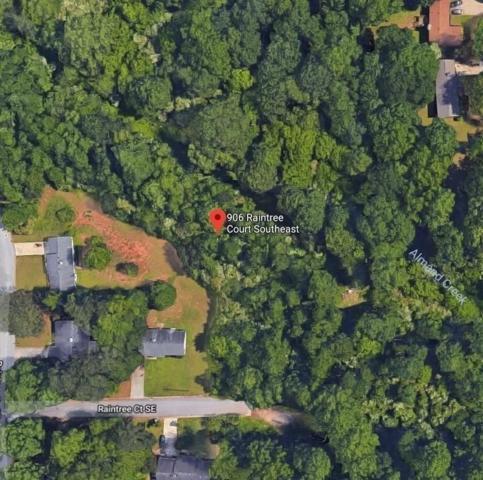 906 Raintree Court, Conyers, GA 30094 (MLS #6537057) :: North Atlanta Home Team