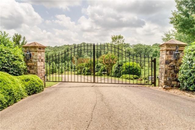 303 Cove Lake Drive, Marble Hill, GA 30148 (MLS #6544220) :: Hollingsworth & Company Real Estate
