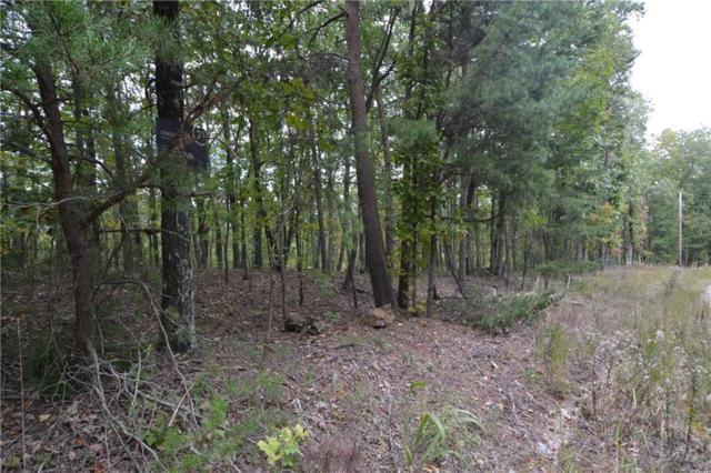 1 Richard Trail, Jasper, GA 30143 (MLS #6549240) :: RE/MAX Paramount Properties