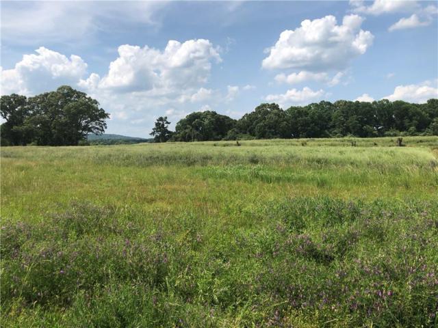 50 Brown Farm Road SW, Cartersville, GA 30120 (MLS #6552964) :: Hollingsworth & Company Real Estate