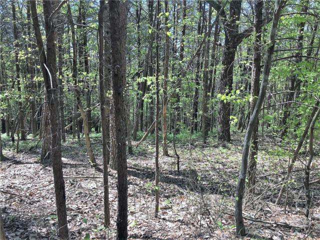lot341 Oak Trace West, Jasper, GA 30143 (MLS #6553475) :: The Zac Team @ RE/MAX Metro Atlanta