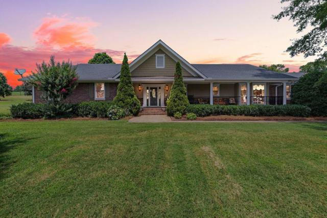 35 Walker Road, Cartersville, GA 30121 (MLS #6557277) :: Iconic Living Real Estate Professionals