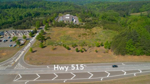 2256 515 Highway, Jasper, GA 30143 (MLS #6561647) :: The Heyl Group at Keller Williams