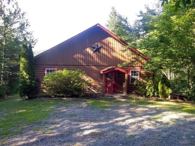 289 Cozy Acres Lane, Cherry Log, GA 30522 (MLS #6568966) :: Ashton Taylor Realty