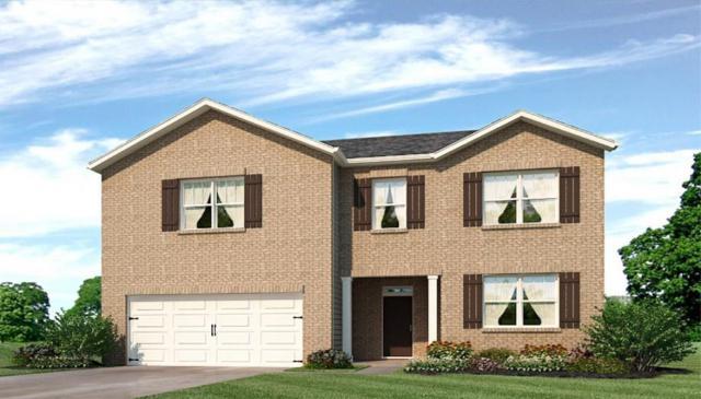 155 Filson Drive, Senoia, GA 30276 (MLS #6572086) :: Kennesaw Life Real Estate