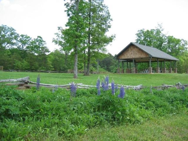 14 Fern Park Drive, Dawsonville, GA 30534 (MLS #6572093) :: The Heyl Group at Keller Williams