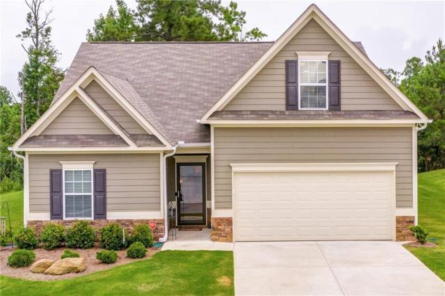 228 Persian Ivy Way, Dallas, GA 30132 (MLS #6572139) :: Kennesaw Life Real Estate
