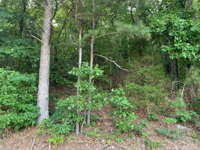 0 Johnson Lake Road, Cedartown, GA 30125 (MLS #6574179) :: Path & Post Real Estate