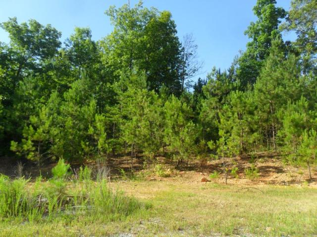 810 Cornelius Road, Cedartown, GA 30125 (MLS #6574250) :: Path & Post Real Estate
