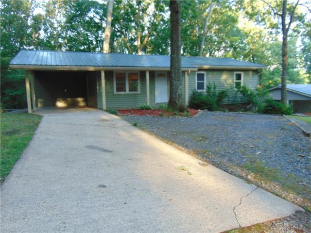 685 Davis Road, Blue Ridge, GA 30513 (MLS #6575389) :: North Atlanta Home Team