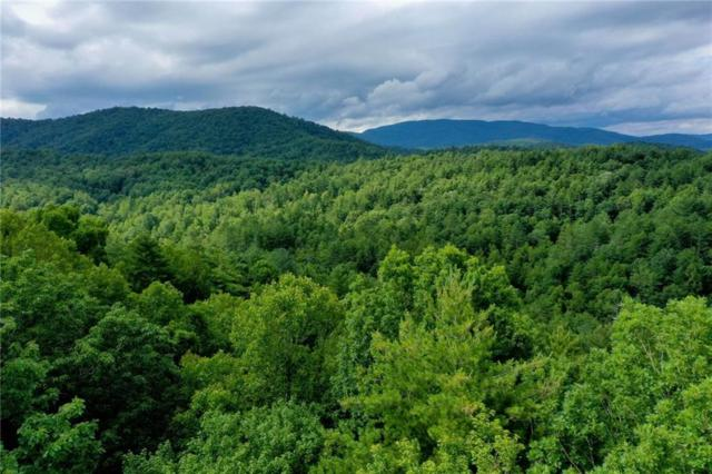 Lot 8 Walker Reserve, Ellijay, GA 30540 (MLS #6577509) :: North Atlanta Home Team