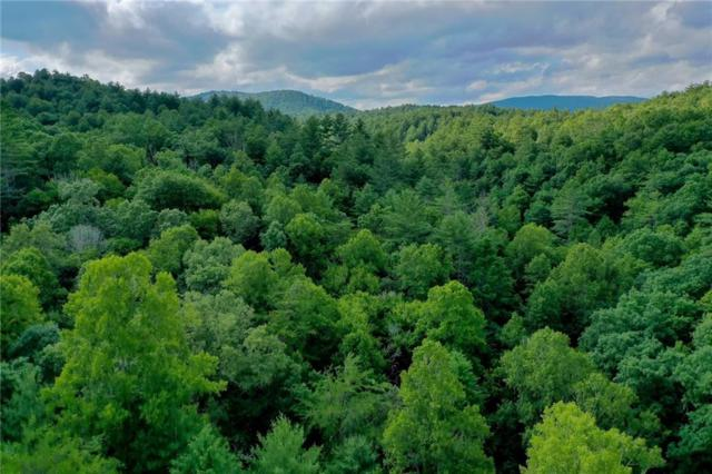 Lot 11 Walker Reserve, Ellijay, GA 30540 (MLS #6577530) :: North Atlanta Home Team