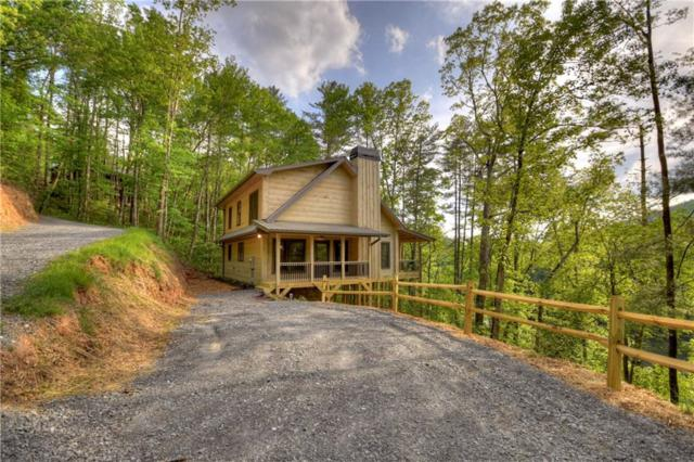 265 Baylor Drive, Cherry Log, GA 30522 (MLS #6578956) :: The Cowan Connection Team