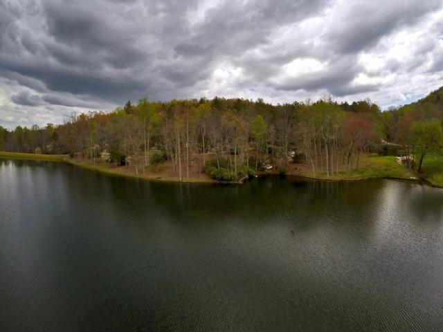 0 Doublehead Gap Road, Blue Ridge, GA 30513 (MLS #6579557) :: North Atlanta Home Team