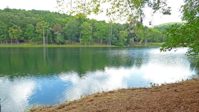 Lot 2 Doublehead Gap Road, Blue Ridge, GA 30513 (MLS #6579574) :: The Heyl Group at Keller Williams