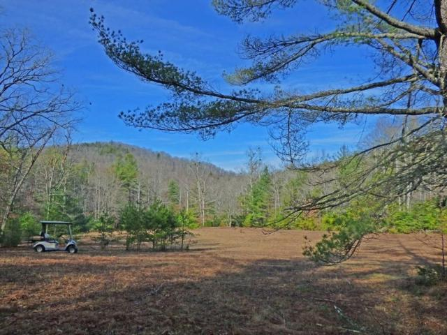 Lot 5 Doublehead Gap, Blue Ridge, GA 30513 (MLS #6579605) :: The Heyl Group at Keller Williams