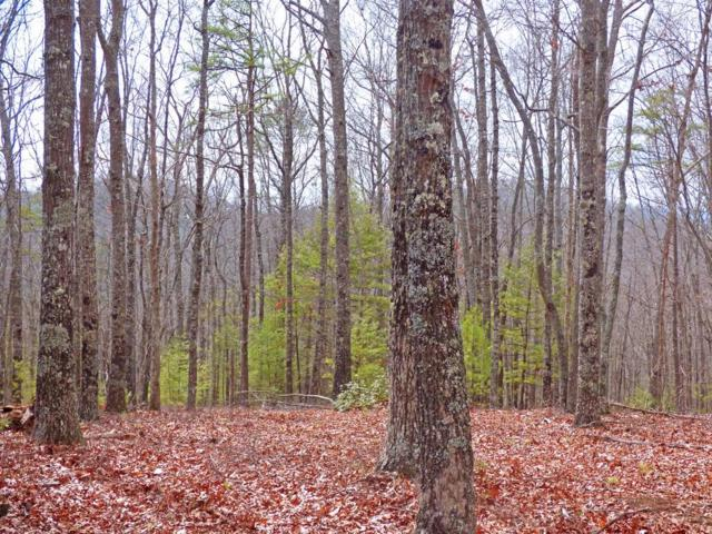 Lot 7 Doublehead Gap, Blue Ridge, GA 30513 (MLS #6579901) :: The Heyl Group at Keller Williams