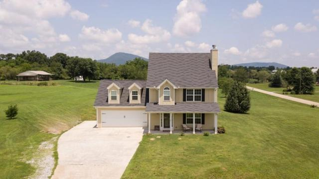 5604 Divine Lane, Clermont, GA 30527 (MLS #6584547) :: The Stadler Group
