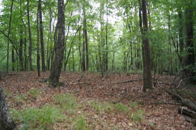 1 Bumpy Trail, Dawsonville, GA 30534 (MLS #6585342) :: The North Georgia Group