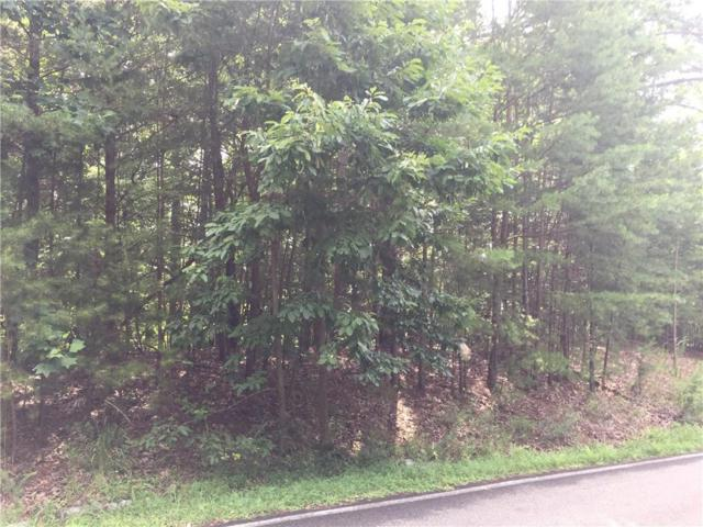 2902 Meadowbrook Ridge, Big Canoe, GA 30143 (MLS #6585933) :: Julia Nelson Inc.