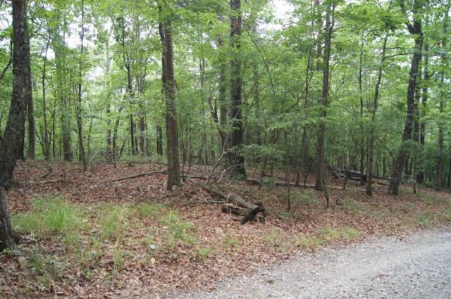 2 Bumpy Trail, Dawsonville, GA 30534 (MLS #6586147) :: The North Georgia Group