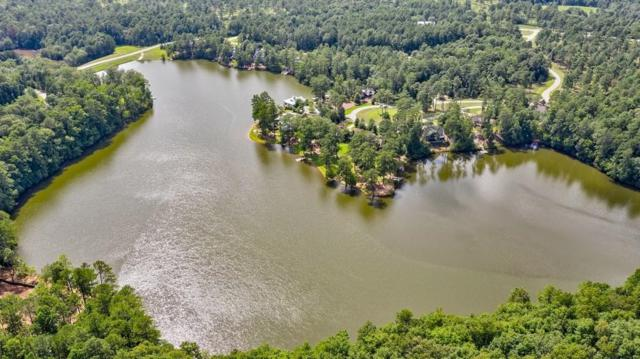 99 Blalock Lakes Drive, Newnan, GA 30263 (MLS #6587249) :: North Atlanta Home Team