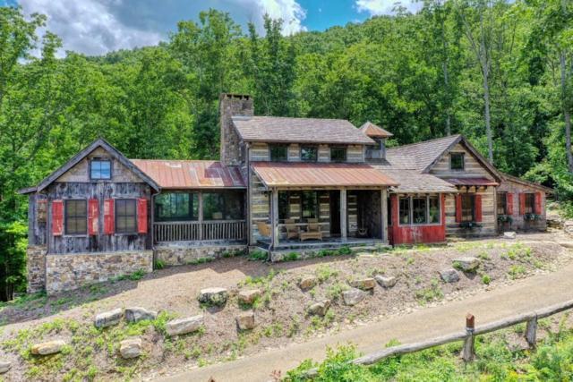 1011 Utana Bluffs Trail, Ellijay, GA 30540 (MLS #6587922) :: North Atlanta Home Team