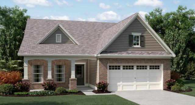 224 William Creek Drive, Holly Springs, GA 30115 (MLS #6589319) :: North Atlanta Home Team