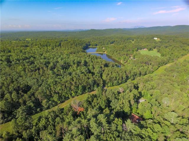 1400 Deer Trail Lakes Drive, Clarkesville, GA 30523 (MLS #6589786) :: The North Georgia Group